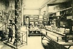 1913-Exposition-de-Gand-Congo-belge_-Propagande-agricole-coloniale